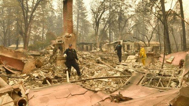 क्यालिफोर्निया डढेलो: मृत्यु हुनेको संख्या ४२ पुग्यो