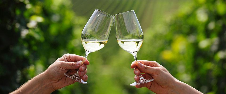 दशैँमा मदिरा कति खाने ? अध्ययन भन्छ : पुरुषलाई २ र महिलालाई १ ग्लास भन्ने गलत